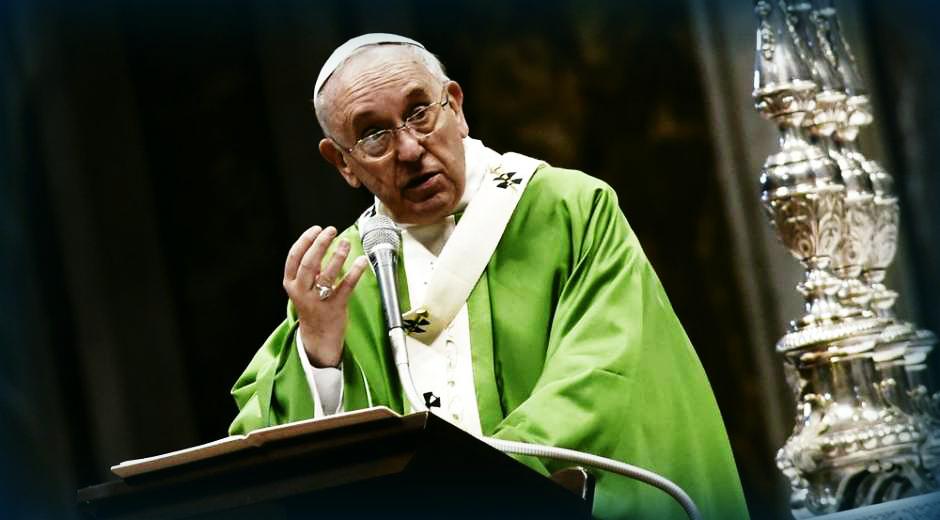 homo pave